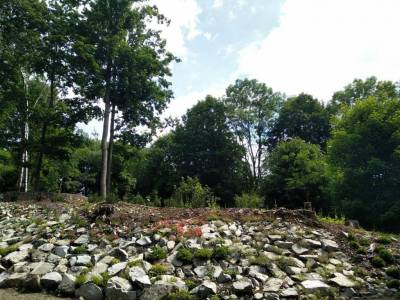 Polevsko - arboretum