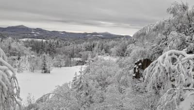Polevsko, zima 2021