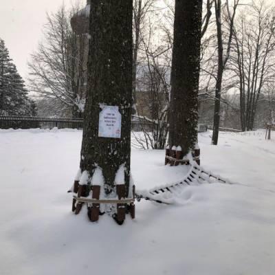 Sněhohrátky 2021 v arboretu